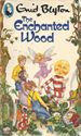 Picture of The Enchanted Wood