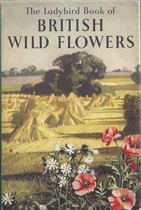 Picture of British Wild Flowers