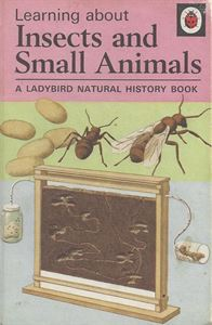 Picture of Learning about Insects and Small Animals