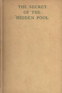 Picture of The Secret of the Hidden Pool