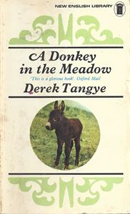 Picture of A Donkey in the Meadow