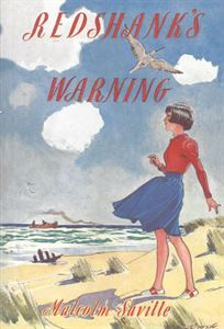 Picture of Redshank's Warning