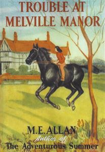 Picture of Trouble at Melville Manor